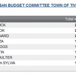Town Council to Divide Town Over Budget Committee Appointment